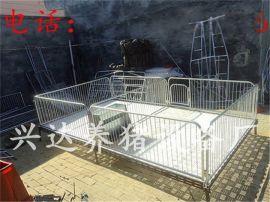 厂家供应猪产床保育床漏粪板 保育床定位栏 产床保育床 定位栏保育床 保育床设备-兴达养猪设备厂