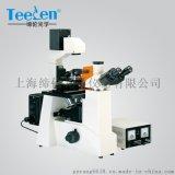 荧光显微镜DXY-1倒置式荧光显微镜