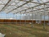 山東透明陽光板廠家,陽光板溫室大棚造價,溫室大棚防滴露陽光板價格