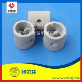 陶瓷鲍尔环常用规格Dg50/Dg76上秞鲍尔环填料