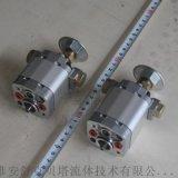 CB-E0.5/1.5帶濾網雙向齒輪泵