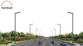 泰格LED照明,路灯杆,道路照明,热镀锌