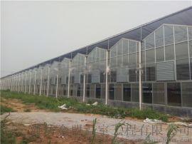 江蘇玻璃溫室,紋洛式玻璃溫室大棚