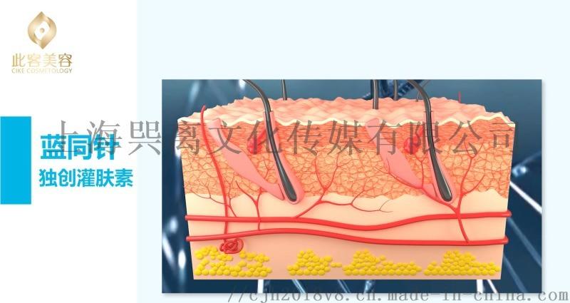 广州化妆品三维动画制作美容护肤原理三维动画