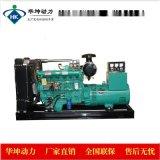 濰坊華豐75千瓦柴油發電機組 消防灌溉用柴油發電機組 R6105ZD