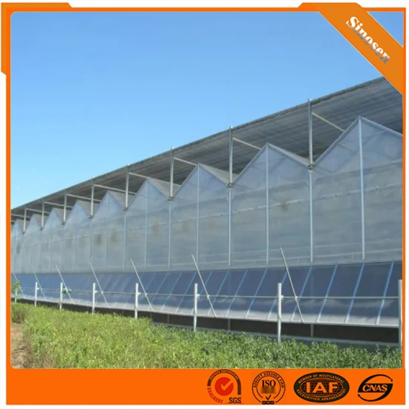 新型智慧陽光板溫室 連棟陽光板溫室大棚