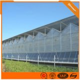 新型智能阳光板温室 连栋阳光板温室大棚