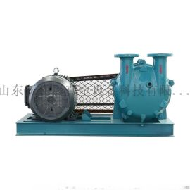 ZGZB水环式真空泵