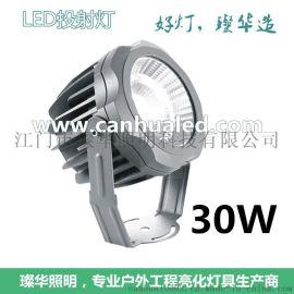 江门led厂家璨华照明直供单颗大功率10W~35W COB 防水设计投光灯投射灯
