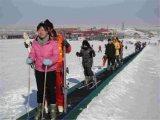 也适合儿童乘坐的滑雪场魔毯 辽宁魔毯