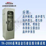 TK-2000型煤气柜回收气体在线分析系统