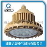 固態免維護LED防爆燈CZ0873/1-30W