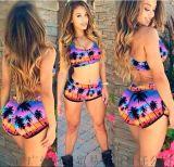 海邊度假必備泳裝短褲套裝 沙灘油畫印花性感泳衣【女裝大量現貨批發】