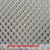 塑料网带 水产塑料网厂家 育雏网床制作