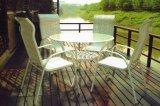 餐桌椅组合(PF-2034)