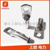 铜鼻子 铜管鼻 管压铜接线端子DTG 镀锡铜端子