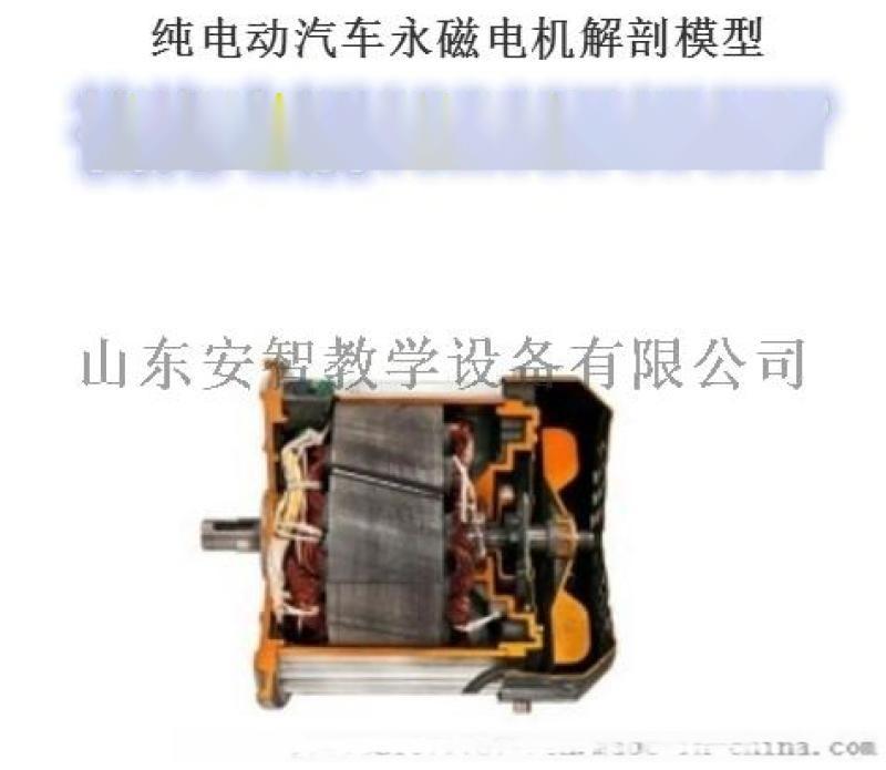 汽车新能源 永磁电机解剖模型