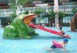 儿童水乐园戏水小品青蛙滑梯