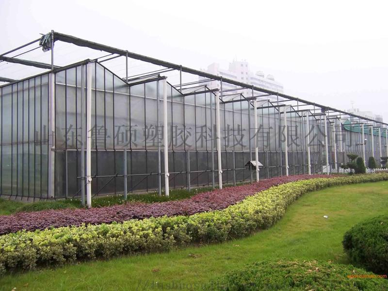 滨州温室工程透明阳光板厂家