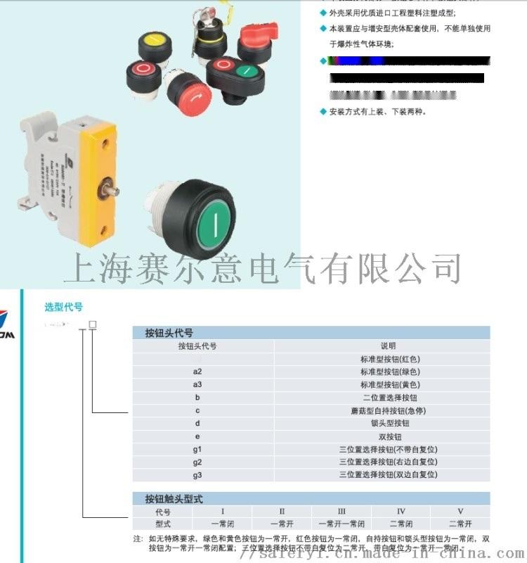 防爆按钮装置BA8060