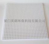 食品级白色塑料格子网片,耐酸碱防腐水处理隔离网架