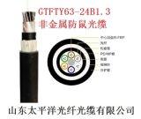 太平洋光纜 GYFTY63-24B1.3 雙護套非金屬加強型防鼠光纜 12/24芯