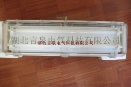 BYD705-2x36xJ防爆防腐全塑应急荧光灯