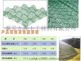辽宁三维植被网,公路边坡绿化