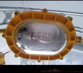 BFC8120内场防爆泛光灯 海洋王BFC8120内场强光防爆灯厂家直销