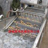 瓜果菜蔬气泡清洗机 根茎气泡清洗机 蔬菜清洗机厂家
