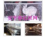 兔籠(TL587)