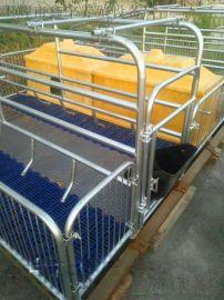 小猪仔猪保温箱加厚猪用保温箱养猪养殖设备