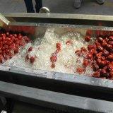 大型果蔬清洗机 全自动洗菜机 气泡式果蔬清洗机