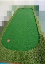 高尔夫便携式推杆果岭
