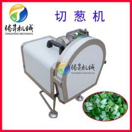 输送带式切菜机 小型台式切葱机 切葱花切葱段机
