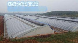 供应郑州蔬菜大棚怎么建无支柱蔬菜温室大棚的建设连栋温室大棚的建造 蔬菜大棚连栋大棚建设承建厂家