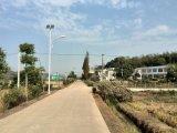 嶽麓區廠區|校園|別墅|小區|鄉村建設太陽能路燈