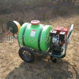 厂家直销手推式汽油打药机园林四轮推车喷雾器