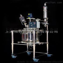 上海双层玻璃反应釜S212-100L品质保证
