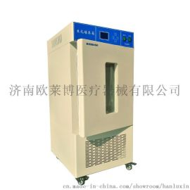 厂家直销 25度恒温培养箱 微生物培养专用