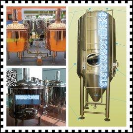 尊皇ZH啤酒锥型不锈钢发酵罐