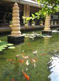锦鲤鱼池净化过滤设备