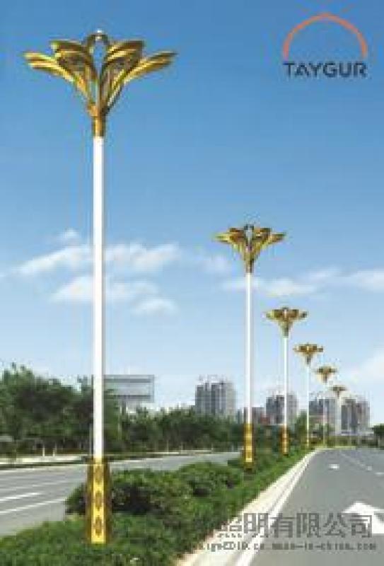 泰格LED照明灯、道路灯、户外路灯,广场灯,中杆灯