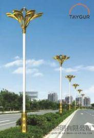 泰格LED照明燈、道路燈、戶外路燈,廣場燈,中杆燈