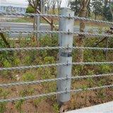 绳索护栏_公路绳索护栏_绳索防撞护栏