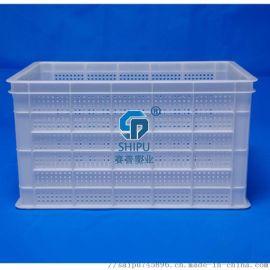 四川汉源花椒箱 塑周转框大号套叠多用塑料筐
