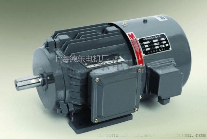 上海德東YVF2-200L-4 30KW變頻電機
