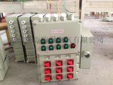 BXD51-T8/K防爆照明動力配電箱