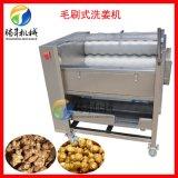 商用大姜生姜清洗机 土豆去皮脱皮机 马蹄清洗机