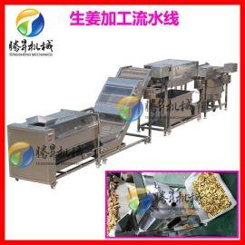 生姜加工設備 大姜/生姜去皮清洗切片流水線 定制款